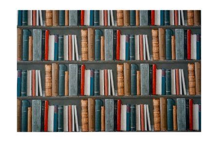 copertina articolo con una libreria piena di libri colorati