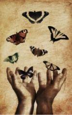 disegno di mano aperta e farfalle che volano via