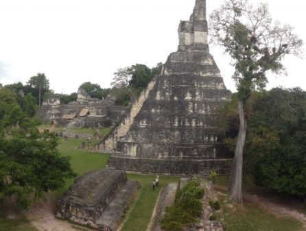 piramide a tikal fra la folta vegetazione