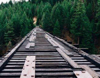 foto di un binario dentro un bosco