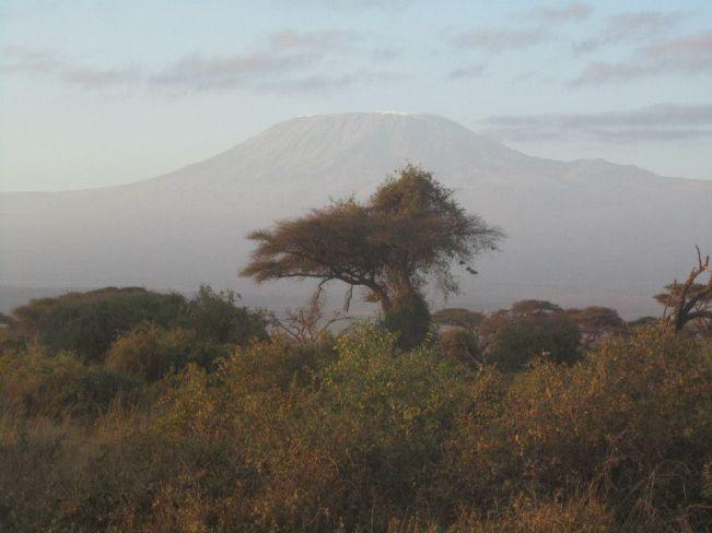 Kilimangiaro sullo sfondo