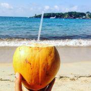 foto del cocco per introdurre l'articolo sulle isole dell'Honduras