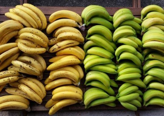 banana o platano?