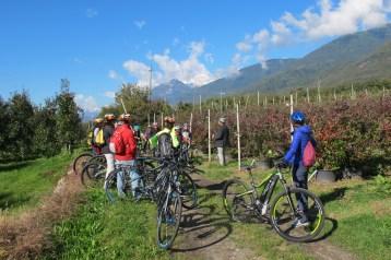 Corso per imprenditori turistici Bike Friendly - conoscere la Valtellina per divulgarla 18