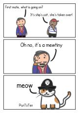 Pirate politics
