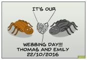 webbing-day