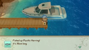 STORY OF SEASONS Friends of Mineral Town PC Crack