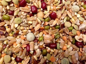 Jen's Organic Sprouting Parakeet Food