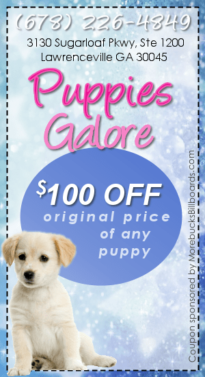 Puppies Galore Puppy Store In Lawrenceville GA