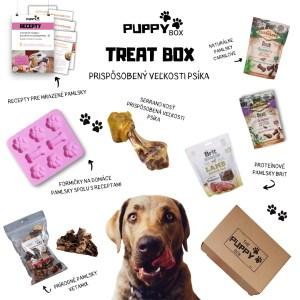 Treat box- krabička plná psích dobrôt