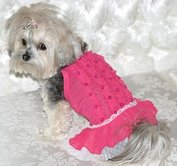 stylish dog clothes
