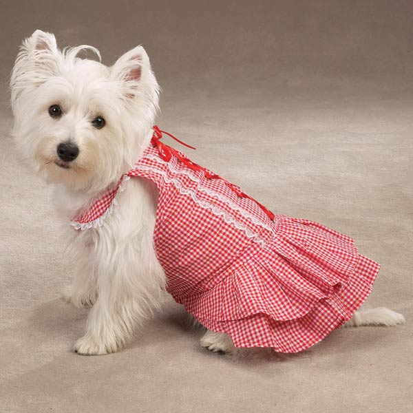 pink stylish dog dress