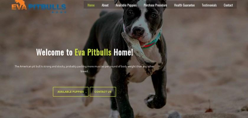 Evapitbullshome.com - Pit Bull Puppy Scam Review