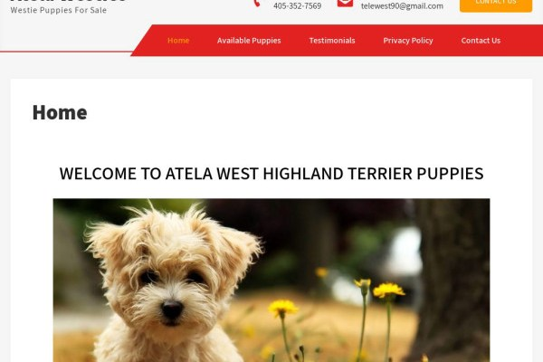 Atelawesties.com - Terrier Puppy Scam Review