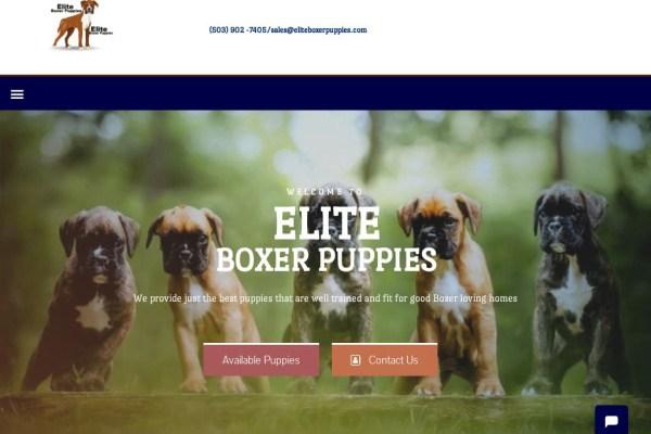 Eliteboxerpuppies.com - Boxer Puppy Scam Review