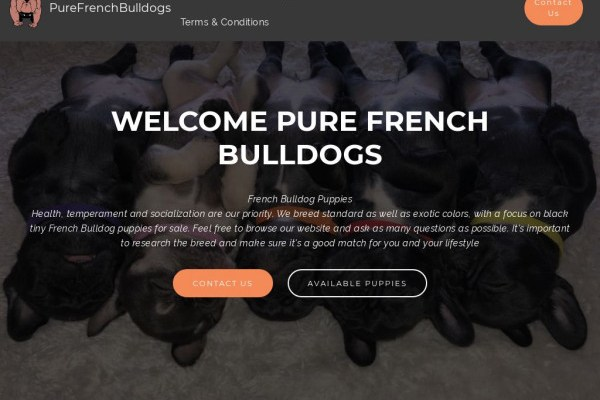 Purefrenchbulldog.com - French Bulldog Puppy Scam Review
