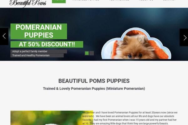 Beautifulpoms.com - Pomeranian Puppy Scam Review