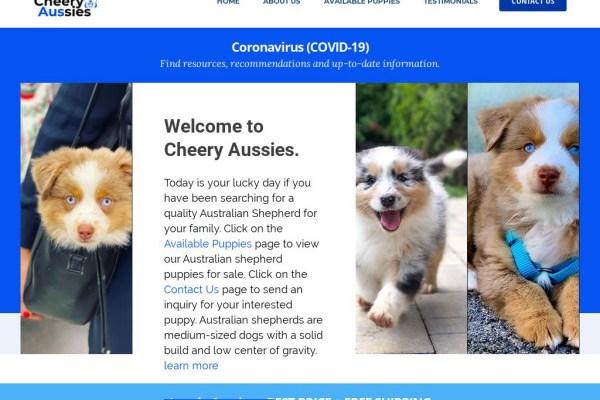 Cheeryaussies51.com - Australian Shepherd Puppy Scam Review
