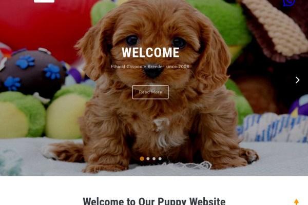 Rockinghamkennel.com - Cavapoo Puppy Scam Review