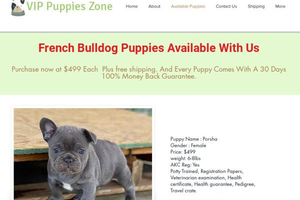 Vippuppieszone.com - French Bulldog Puppy Scam Review
