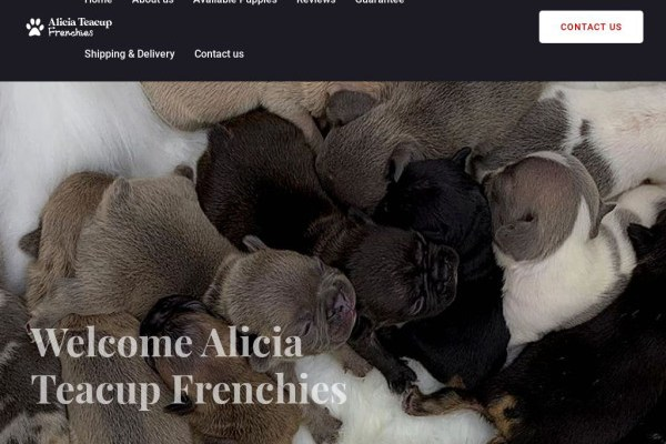 Aliciateacupfrenchies.com - French Bulldog Puppy Scam Review