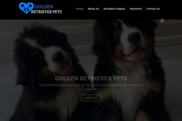 Goldenretrieverpets.com - Golden Retriever Puppy Scam Review