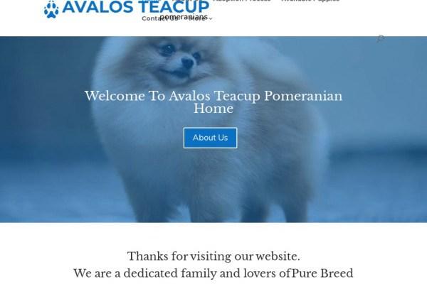 Avalosteacuppomhome.com - Pomeranian Puppy Scam Review