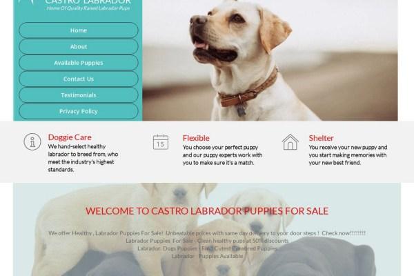 Castrolabradorpups.com - Labrador Puppy Scam Review