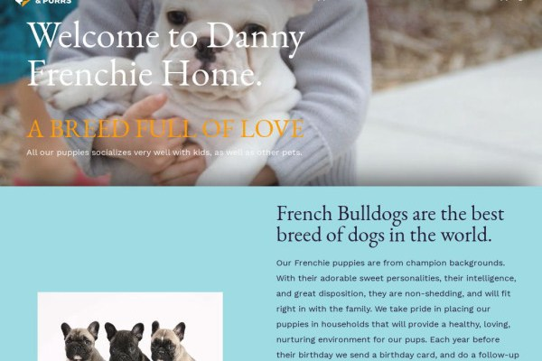 Dannyfrienchiepuppies.com - French Bulldog Puppy Scam Review