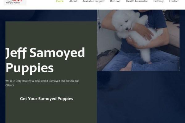 Jeffsamoyedpuppies.com - Samoyed Puppy Scam Review