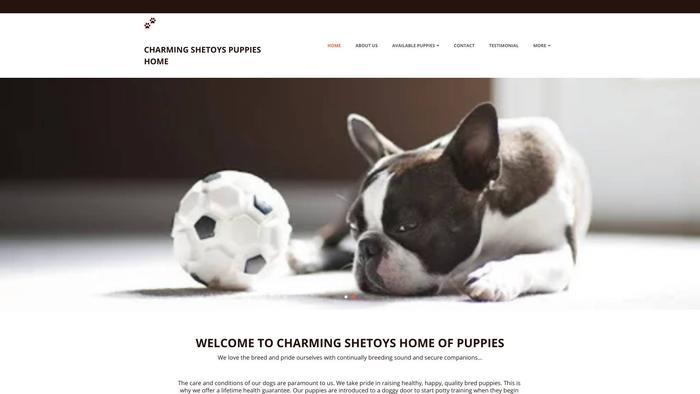 Charmingshetoyshome.net - Australian Shepherd Puppy Scam Review