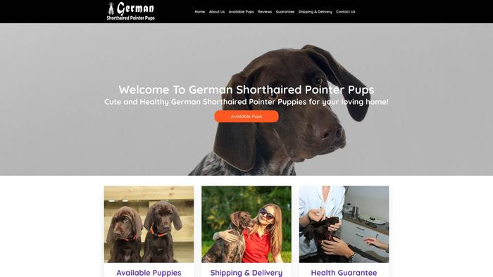 Gshorthairedpointerpups.com - British Shorthair Puppy Scam Review