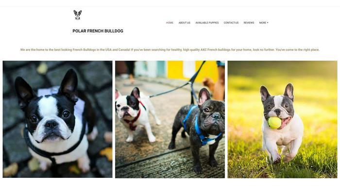 Polarfrenchbulldog.net - French Bulldog Puppy Scam Review