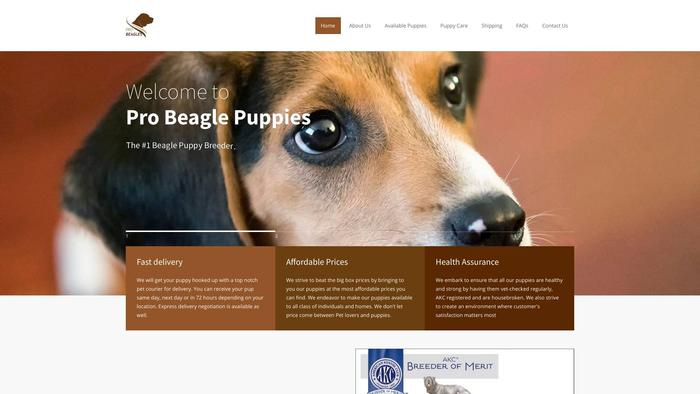 Probeaglepups.com - Beagle Puppy Scam Review