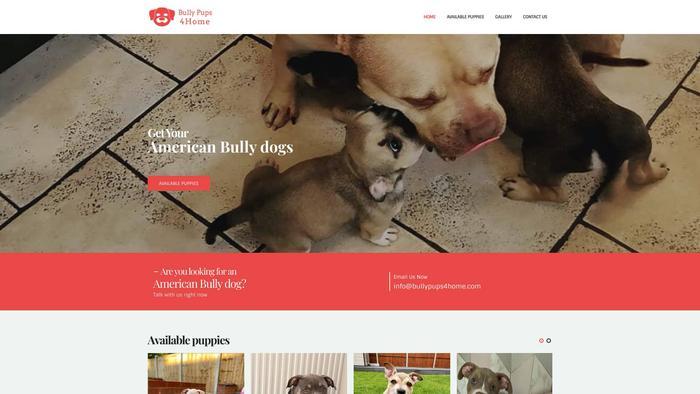 Bullypups4home.com - English Bulldog Puppy Scam Review