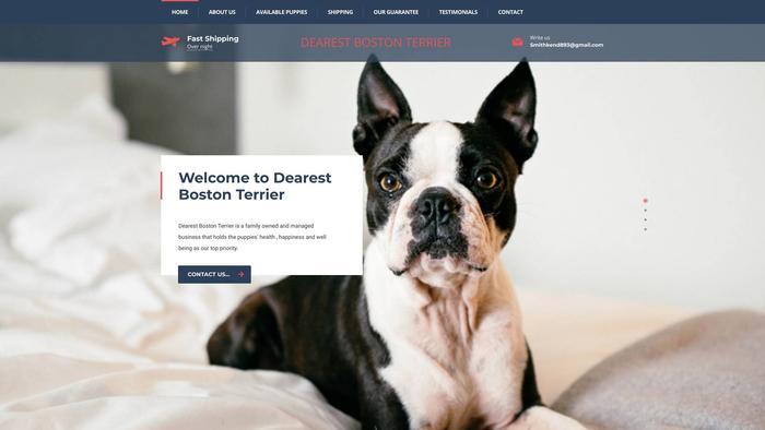 Dearestbostonterrier.com - Boston Terrier Puppy Scam Review