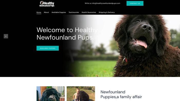 Healthynewfounlandpups.com - Saint Bernard Puppy Scam Review