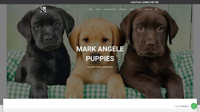 Markangleteacups.com - Labrador Puppy Scam Review