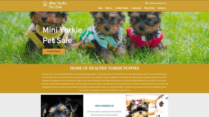 Miniyorkiepetsale.com - Beagle Puppy Scam Review