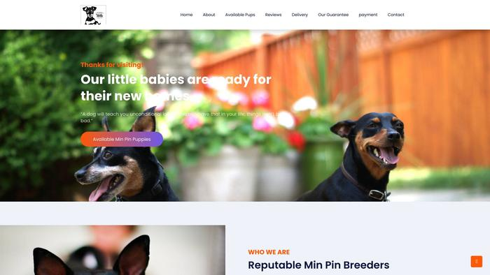 Minpinspuppies.com - Doberman Pinscher Puppy Scam Review