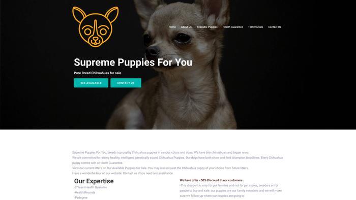 Supremepuppiesforyou.com - Chihuahua Puppy Scam Review
