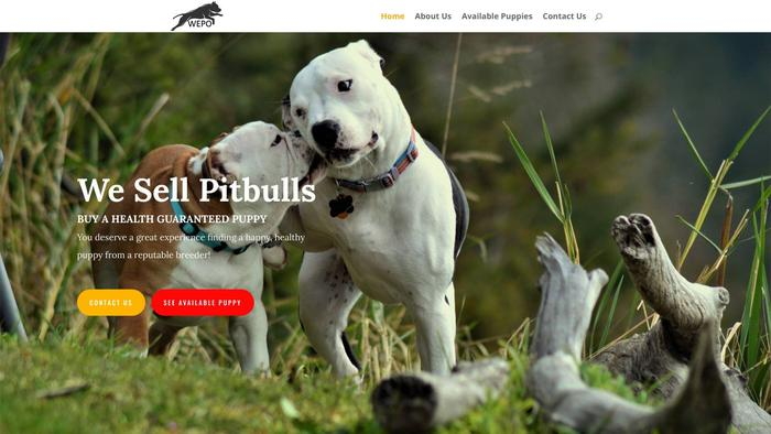 Wepopitbullpuppies.com - Pit Bull Puppy Scam Review