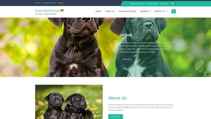 Gracelandcanecorso.com - Cane Corso Puppy Scam Review