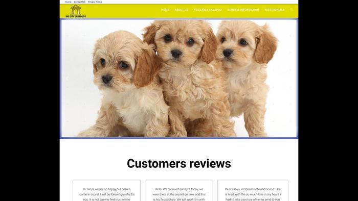 Bigcitycavapoos.com - Cavapoo Puppy Scam Review