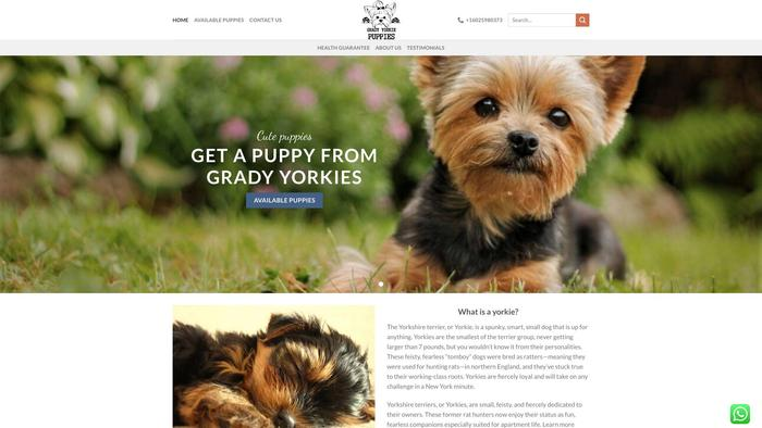 Gradyyorkiepuppies.com - Yorkshire Terrier Puppy Scam Review