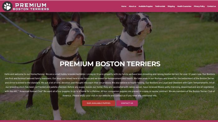 Premiumbostonterriers.com - Boston Terrier Puppy Scam Review