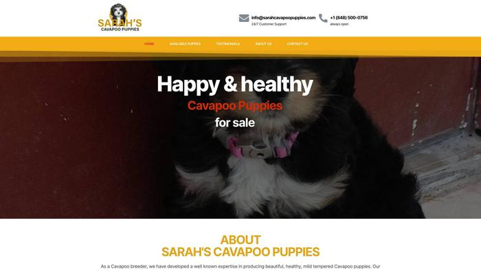 Sarahcavapoopuppies.com - Cavapoo Puppy Scam Review