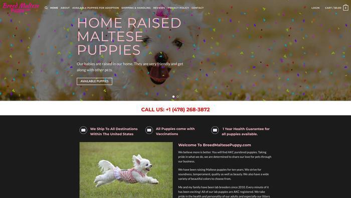 Breedmaltesepuppy.com - Maltese Puppy Scam Review