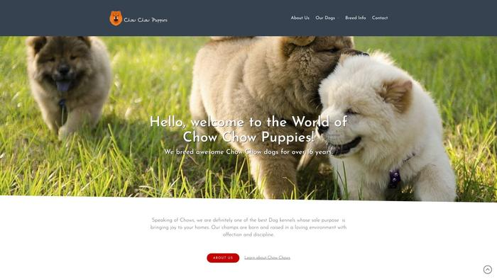 Chowchowpuppies.dog - Chowchow Puppy Scam Review