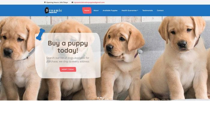 Dynamiclabradorpuppies.com - Labrador Puppy Scam Review
